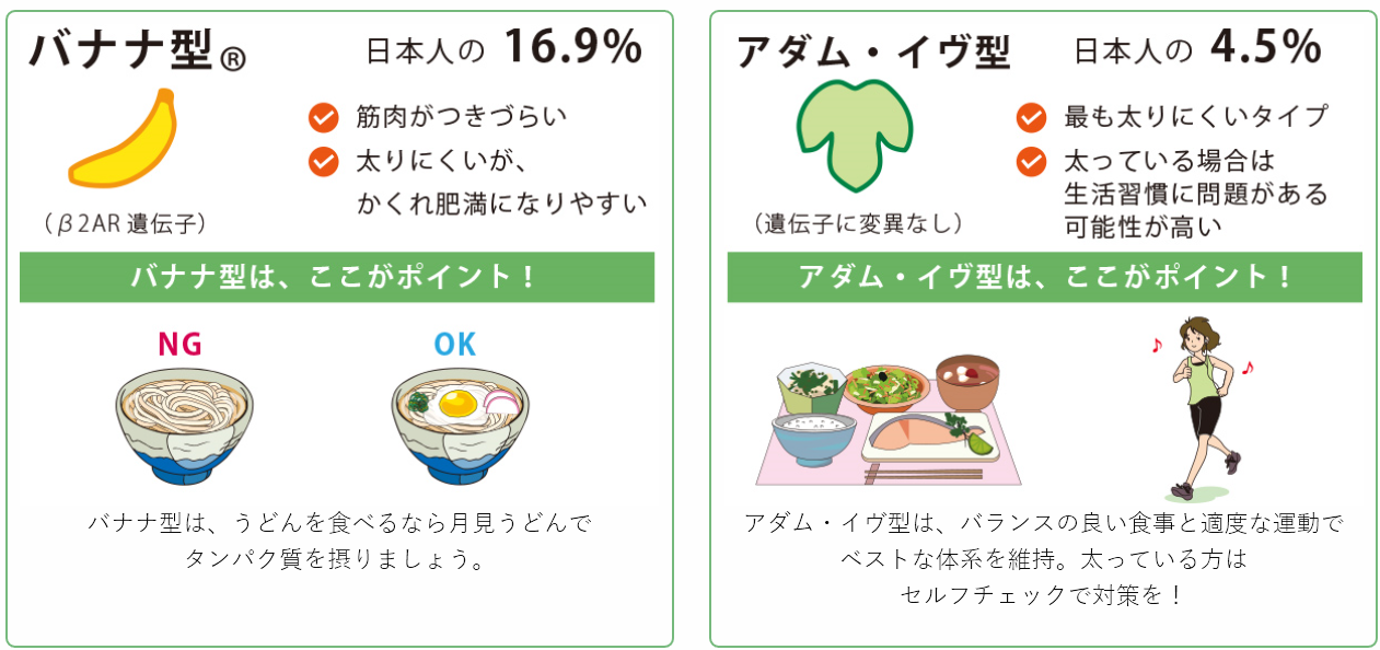 Ginelife DIET(ジーンライフダイエット)遺伝子検査キット